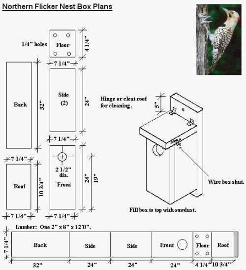 Free Birdhouse Plans For Cardinals Awesome Download Northern Cardinal Bird House Plans Plans Free Bird House Plans Free Bluebird House Bird House Plans