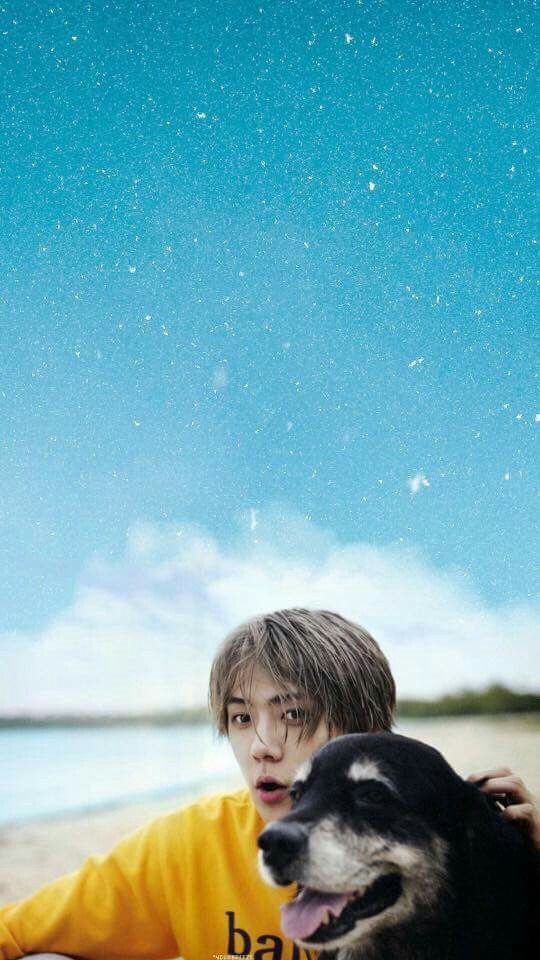 Sehun Wallpaper | EXO | Dear Happiness ptb