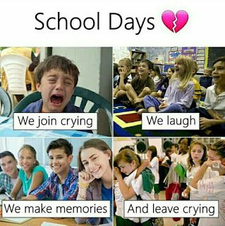 50 Most Funny Memes That Make Your Day Special Fun Quotes Funny Funny Quotes For Teens School Quotes Funny