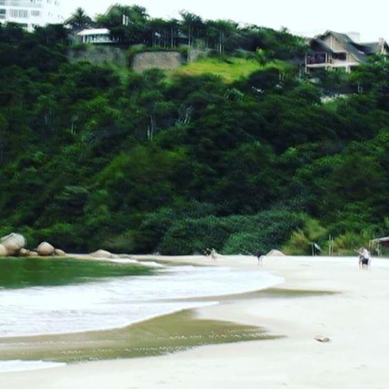 Praia das cordas. Lugar incrivel e de natureza exuberante mesmo no inverno. Mais um local pra curtir no intervalo do almoço. #beach #governadorcelsoramos #praiadascordas #praiasdesc #paradidise #paradiseishere #praiasdosul #winter #siesta