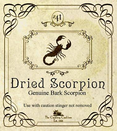 scorpion labels..halloweenforum. .....via missybowen
