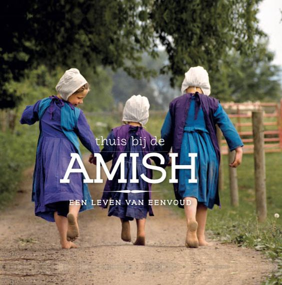Thuis bij de Amish - Danielle Heerens -: