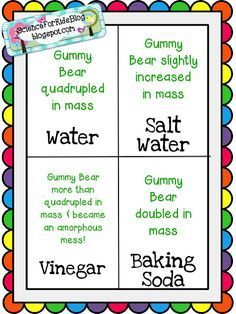 Image Result For Gummy Bear Science Project Gummy Bear Science