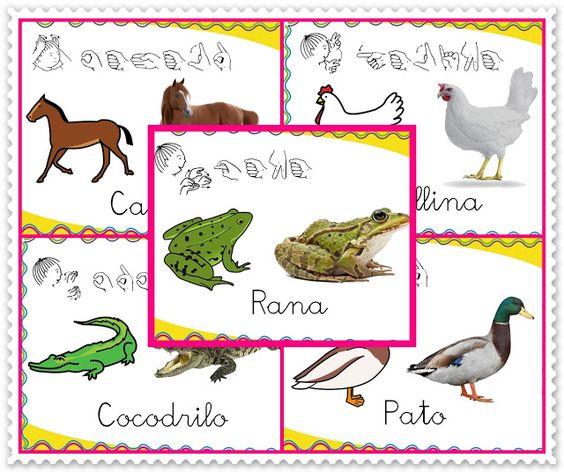 Burbuja de Lenguaje: Vocabulario de los Animales
