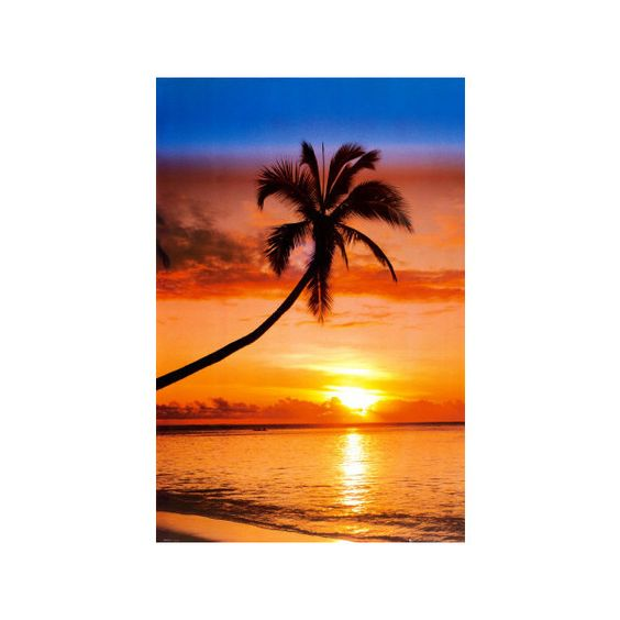 Sunset Palm Poster ($4.99) ❤ liked on Polyvore featuring home, home decor, wall art, landscape posters, landscape wall art and sunset wall art