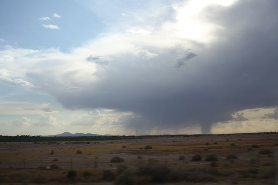 Storm over the desert. Grit filled wind, dust devils and the coal tar smell of creosote bush.