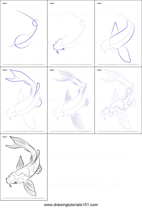 how to draw a koi fish youtube