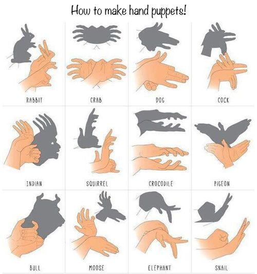 1000 Life Hacks, I kinda  love shadow puppets for some reason: