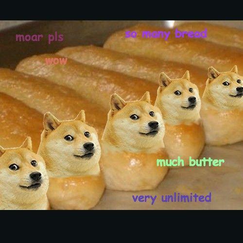 Doge Breadsticks Funny Doge Doge Meme Funny Animal Memes
