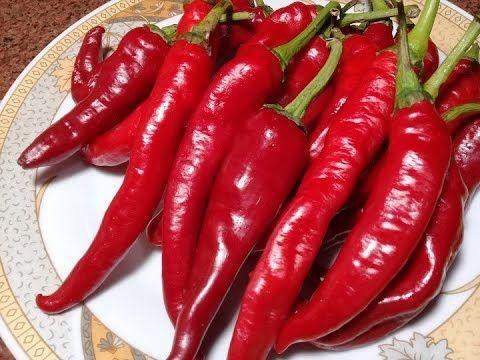 هريسة الشطة الحمرا او دبس الفلفل الحار بطريقة جديدة عمرها ماهتبوظ منك تاني والطعم والريحة تحفة Youtube Stuffed Peppers Vegetables Food