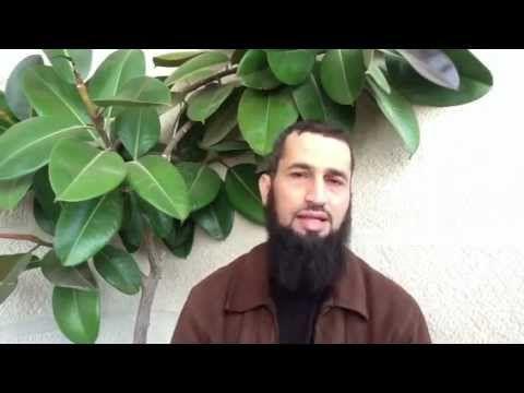 الأخذ بأسباب النجاح نصرة للشريعة12 د إياد قنيبي Youtube Plant Leaves Youtube Plants