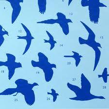 birds in flight - Google Search
