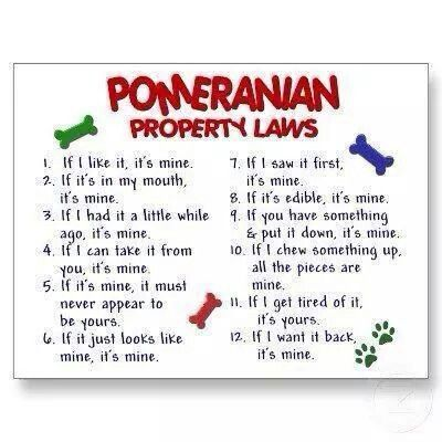 Pomeranian property laws