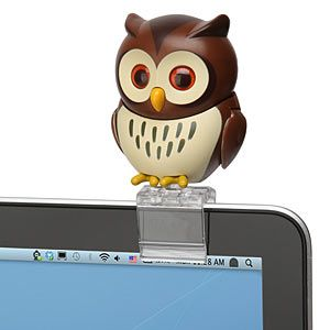 USB Owl that perches on your laptop. Useless and adorable.