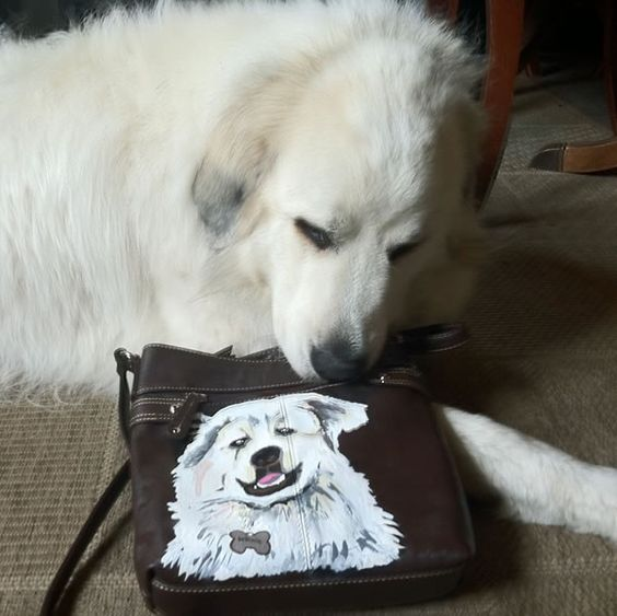 Custom Dog Purse!!!  From Jellyfish. $ 800.00  Create your own custom dog Purse!!!