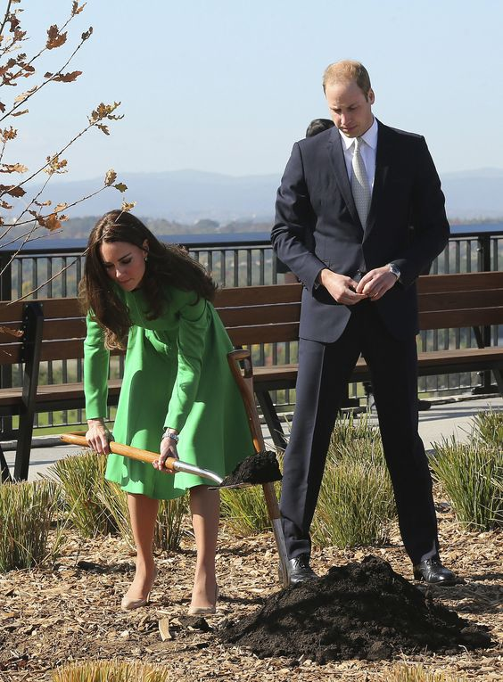 Kate and Will Have Pretty Much Planted an Entire Forest