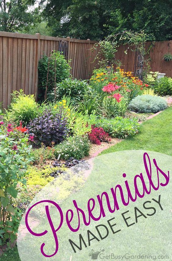 Perennials Gardens And Tips On Pinterest