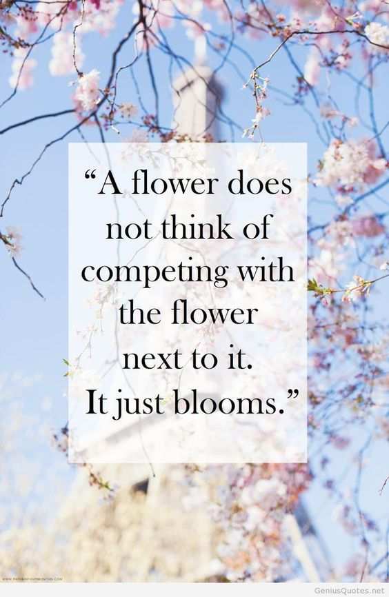 Beautiful quote, but how do you really know that they're competing, eh? ; )
