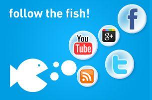 marketingfish.de jetzt kostenlos kennenlernen!    Profitieren Sie von wertvollem Wissen und exklusiven Services für Ihren nachhaltigen Marketing-Erfolg.