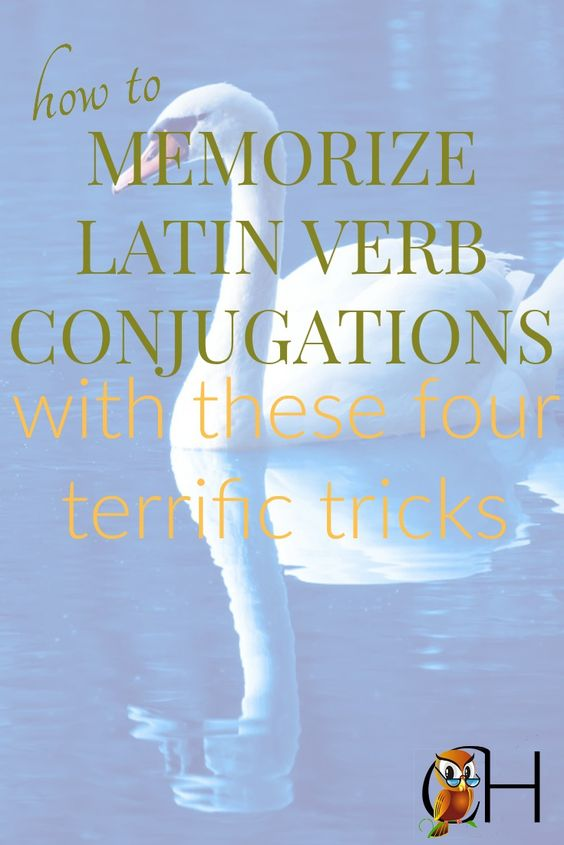 Memorizing Latin verb conjugations becomes easy with these 4 terrific tips. Click to find out how you can use these tips in your homeschool today.