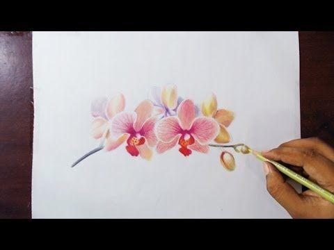 Frensen De, Tecnicas Pintura, Videos Arte, El Congelador, Tutoriales De Dibujo De Flores, Tutoriales De Lápiz Coloreados, Técnicas De Lápiz Coloreados,
