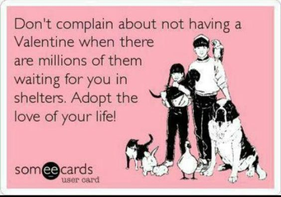 Adopt 3 Money Cant Buy Love Love Your Life Adoption