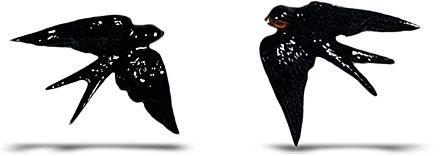típico português, Bordalo Pinheiro 1891 e comercializadas a partir daí até hoje