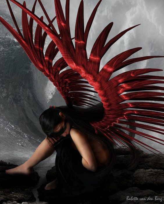 Red Winged Angel