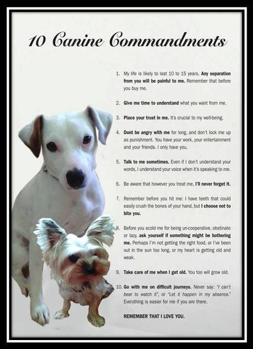 reminder from lucky and Heidi ^_^
