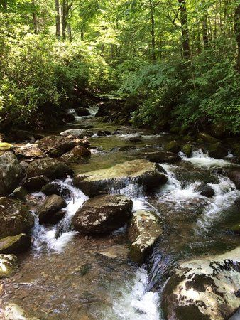 Trail to Ramsey Cascades, Great Smoky Mountains National Park