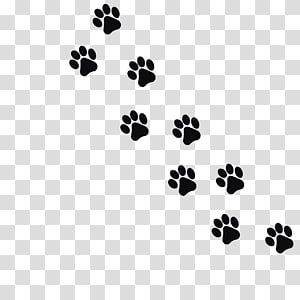 Dog Paw Prints Illustration Cat Dog Kitten Footprint Paw Black Animal Footprints Transparent Background In 2020 Animal Footprints Wolf Paw Print Paw Print Background Paw cat paw print animal dog pet kitty paw prints kitten cute. pinterest