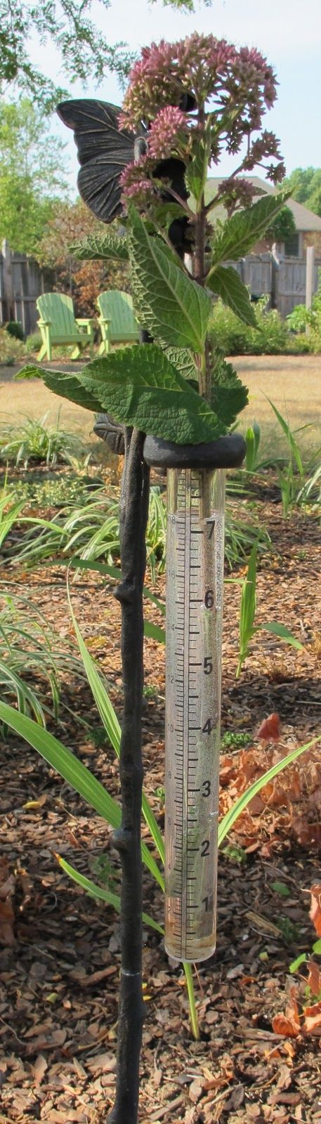 Alternative uses for rain gauges.