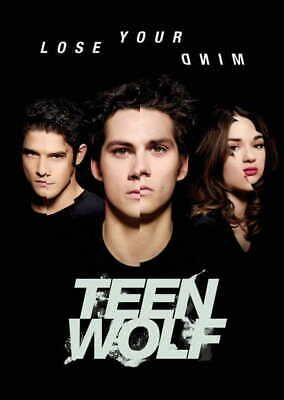 10729 Teen Wolf - American TV Series LAMINATED POSTER CA #fashion #home #garden #homedcor #postersprints (ebay link)