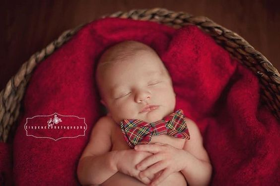A bowtie for Christmas photos