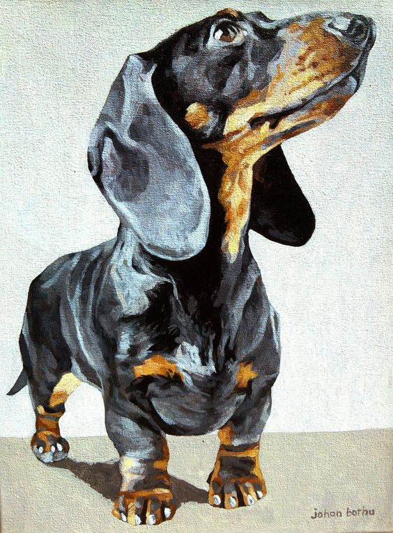 Dachshund painting. Dog art by Johan Botha