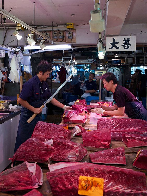Tuna at the tsukiji fish market tokyo japan farms for Japan fish market