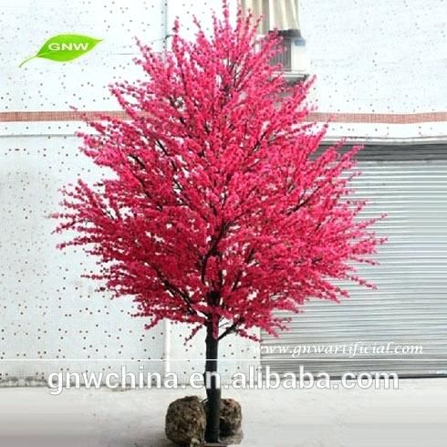 Garden Design With Gnw Bls Small Cherry Blossom Tree Red Color Trees For Wedding With Small Mini Tree Small Ornamental Trees Garden Ideas Uk Landscaping Images