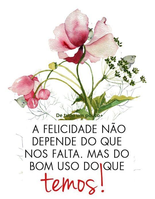 """""""Ser feliz não é ter uma vida perfeita. Mas usar as lágrimas para irrigar a tolerância. Usar as perdas para refinar a paciência. Usar as falhas para esculpir a serenidade. Usar a dor para lapidar o prazer. Usar os obstáculos para abrir as janelas da inteligência."""" Augusto Cury.!...:"""