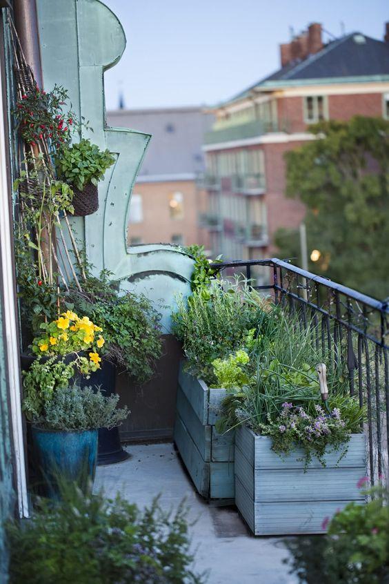 Edible garden balcony, city gardening
