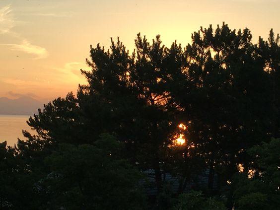 熱帯夜が明けた朝