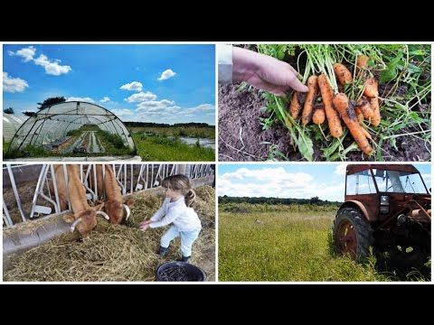 Working On A Farm In France! - YouTube