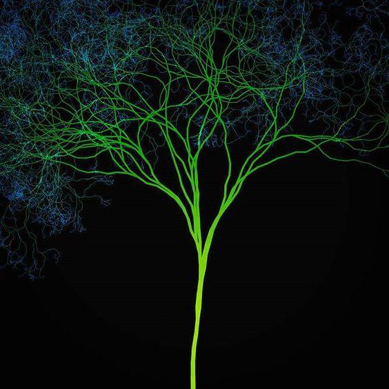 [Fluxos Fluidos  Conexões  Complexas  Completas]  Gostou? Curta nossa página e compartilhe nossa arte!  Imagina vestir a arte entrama? Confira o nosso site, entregamos em todo o Brasil!  http://entrama.com.br  Facebook  facebook.com/arte.entrama  Twitter: @Arte.Entrama  Pinterest: pinterest.com/arte.entrama  #entrama #arte #designer #árvore #ramificações #conexões #complexas #completas #poesia #estampa #camiseta #vistaarte #vistaumaideia