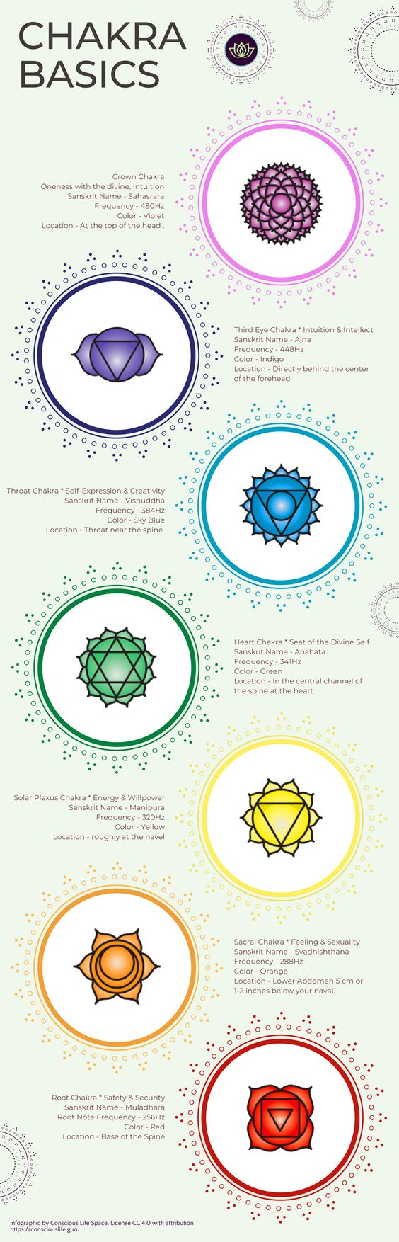 Chakra Basics Infographic