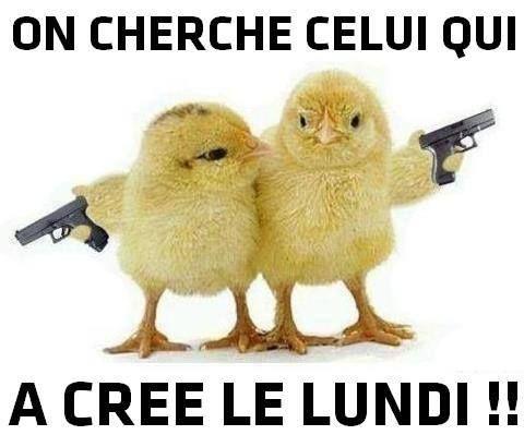 Panneau Humour: