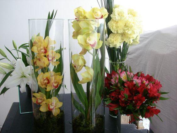 6- Lírios, Astromélias, Cravos, Orquídeas Phalenopsis.