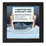 Funny: I Survived The Blizzard of 2013 Keepsake Box, T-shirts, stickers, clocks, mugs and other gear.    Also has a list of the record snowfall totals in Boston, Portland, Nashua and Milford CT.