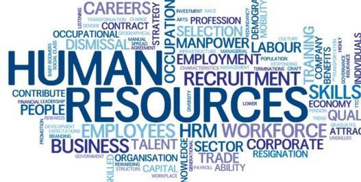 Human Resources Hr Internship Human Resources Employee Engagement Activities Internship