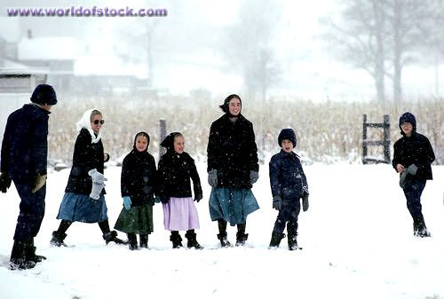 Amish Children In Winter Always Dressed Warm Amish Family Amish Culture Amish