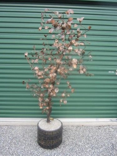 C JERE LIGHTED STANDING RAINDROPS TREE