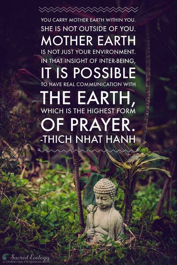 Daily Quotes – Thich Nhat Hanh – tells, who is Earth and how to communicate with her